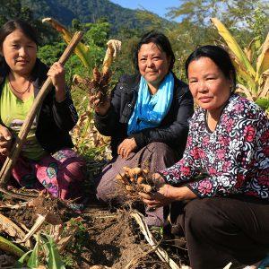 OFEP – Organic Farmers Exchange Programme
